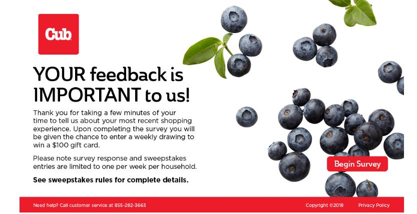 Cub Foods Customer Satisfaction Survey guide 1