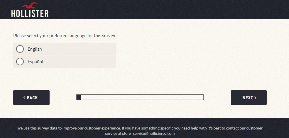 Hollister Customer Experience Survey step 1