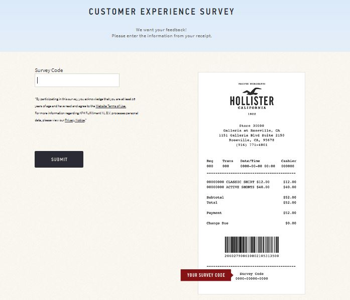 Hollister Customer Experience Survey step 2